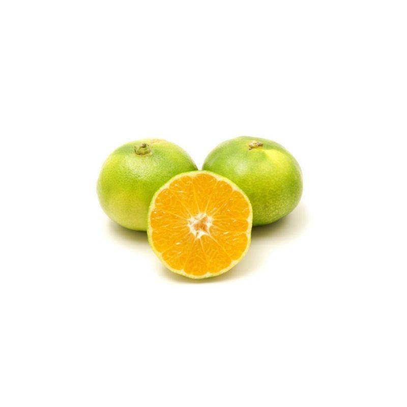 GreenFood Mandarino Satsumi Miyagawa