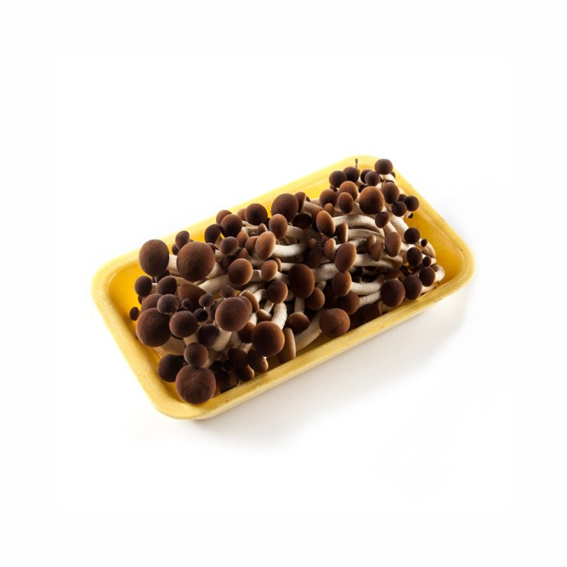 GreenFood Funghi Chiodini confezione